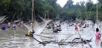 Bekerang, Tradisi Mencari Ikan Masyarakat Muba