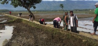 Personel Koramil Suka Makmur, Bersama Warga Gotong Royong Bersihkan Saluran Irigasi Sawah