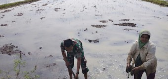 Kopda Ryan Irawan, Bantu Petani Desa Binaannya Bersihkan Lahan Sawah