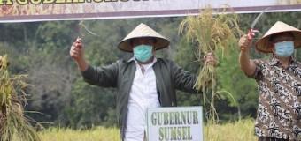 Herman Deru Dorong Kabupaten OKU Menjadi Daerah Lumbung Pangan di Sumsel