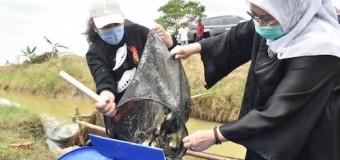 Feby Deru Ajak Warga OI Lestarikan Tradisi Melebung Ikan